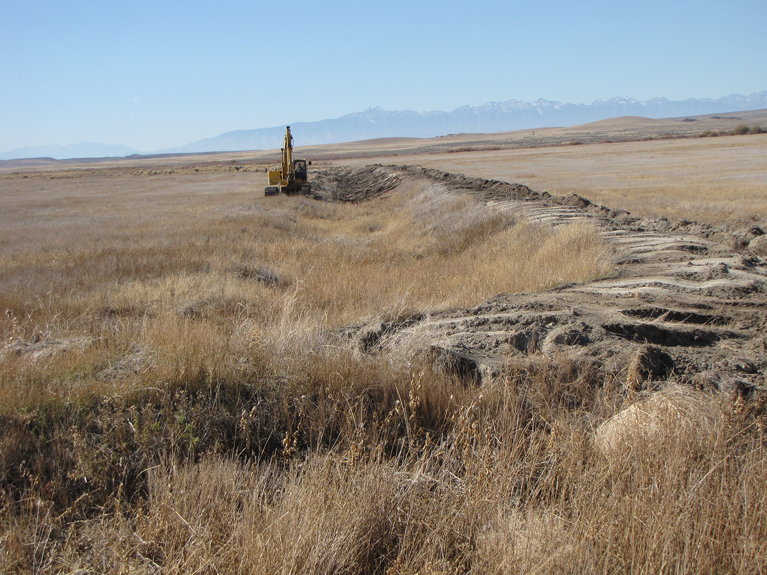 Brindly Pond Dike Removal Project